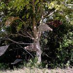 humus-park-2016-torre-di-pordenone-23