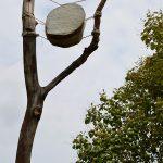 humus-park-2016-torre-di-pordenone-27