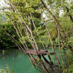 humus-park-2016-palu-di-livenza-14